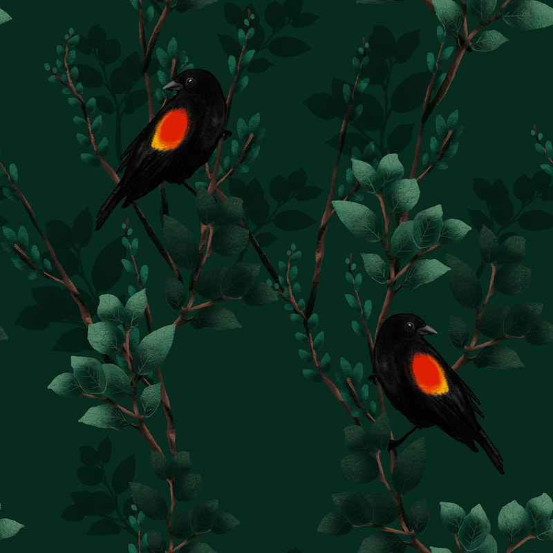 Red winged blackbird repeating pattern by TanyaDraws