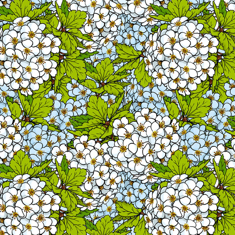 White Spring Blossoms Pattern